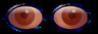 lunettes-LR